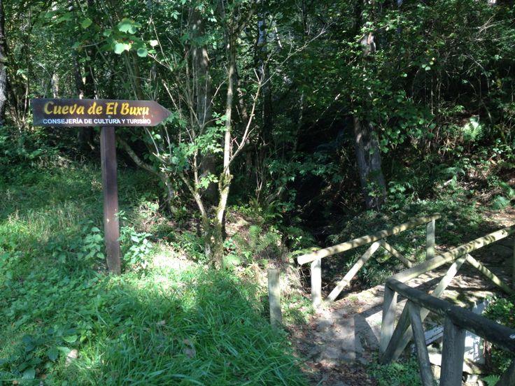 Camino a la Cueva del Buxu, #CangasdeOnis #Asturias
