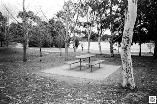 My Canberra - on film mainly Gungahlin, Yarrabi Pond, back in 2015  ... picnic areas and picnic tables...   Olympus XA, Kodak T-Max 100  www.pavelvrzala.com  #Australia #Canberra #Gungahlin #Kodak #TMax100 #film #Olympus #XA