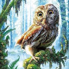 5D Diamond Owl Embroidery Painting Rhinestone Cross Stitch Craft Home Decor DIY