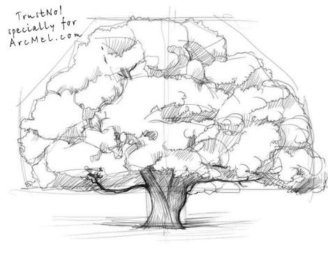 How to draw an oak tree... I like the form, perhaps for a painting I shall do.
