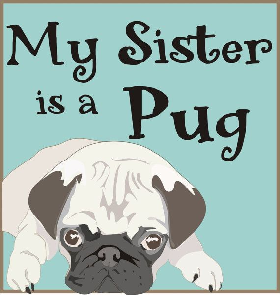 Ordered it!  My Brother/Sister is a Pug Diaper Shirt or Tee by rhoadworks, $10.00: My Sisters, Brother Sist, Pugs Diapers, Pugs Bodysuit, Baby Shirts, Diapers Shirts, Etsy Amazons Baby, Pugs Baby, Pugs Shirts