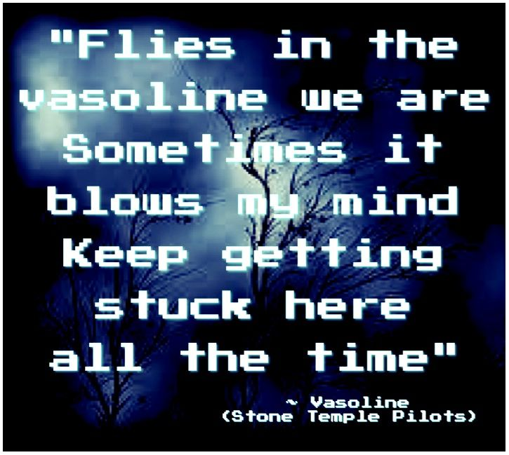 Vasoline ~ Stone Temple Pilots