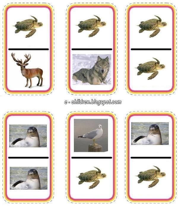 állatok 2