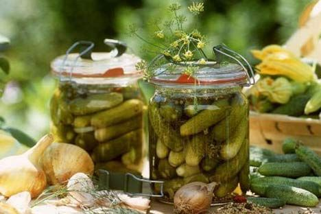 Cool cucumbers in a pretty pickleБыстрые Рецепты, Dill Pickles, Pickles Cucumber, Canning Pickling Fermented, Canning Pickles Fermented, Pretty Pickles, Russia Food, Food Заготовки, Russian Food