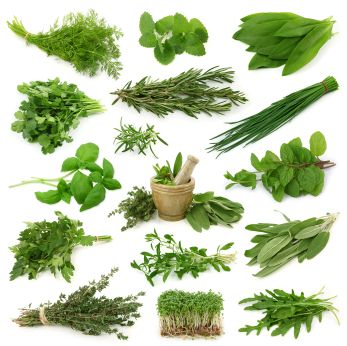 top anti inflammatory herbs - Turmeric, Licorice (sic), Ginger, Cayenne, Boswellia, Cinnamon, Rosemary, Parsley, Garlic and Basil.