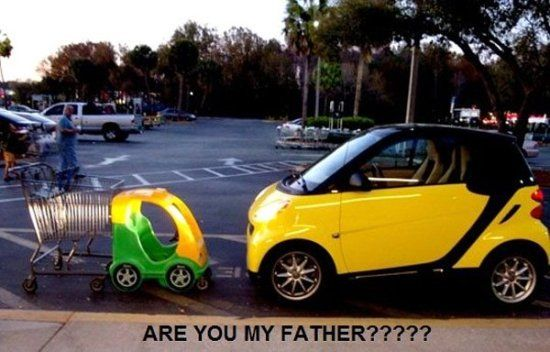 Dad?: Mothers, Cars Humor, Funny Pictures, Giggl, Smart Cars, Funny Stuff, Children Books, Funnystuff, Smartcar