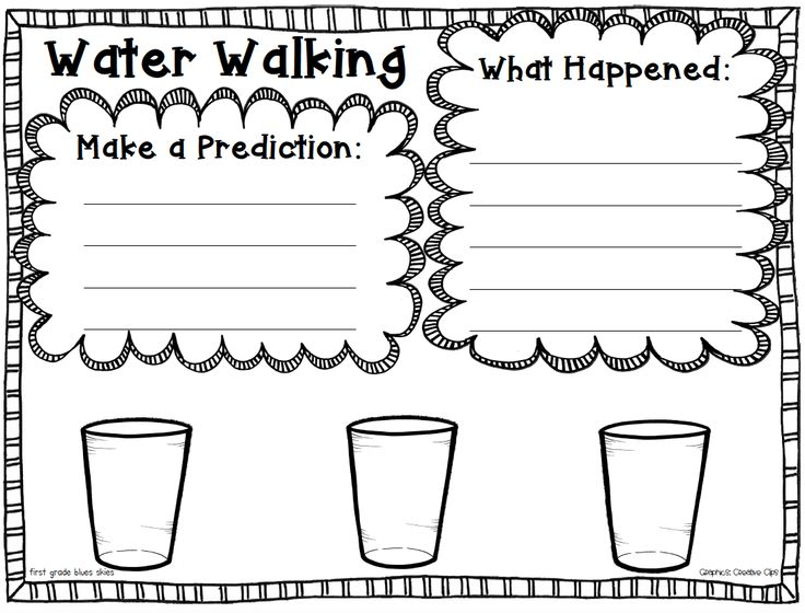 Water Walk Experiment FREEBIE and Bumblebees Close Read | First Grade Blue Skies | Bloglovin'