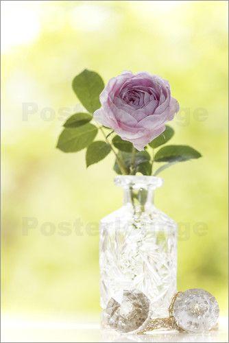 Poster Rose in einer Kristallvase 15 % auf unser gesamtes Sortiment - Code: BLACK - gültig bis zum 30.11.2015