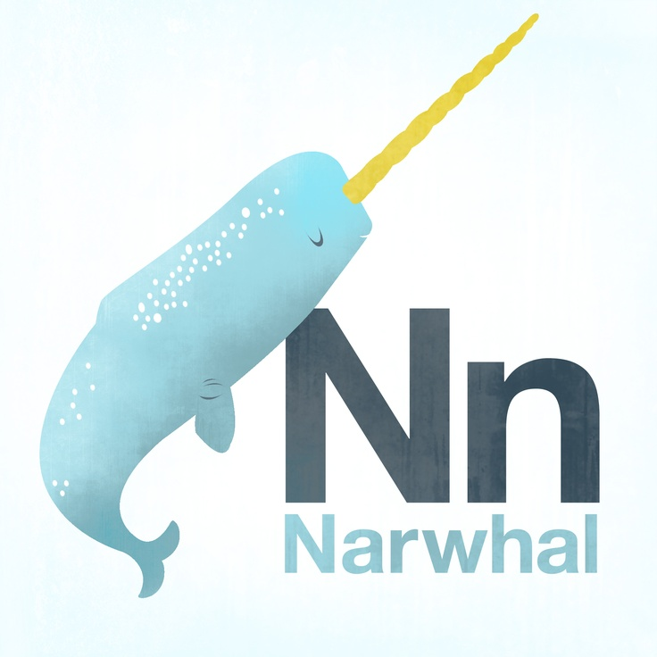 N is for Narwhal! The unicorn of the sea.Sea Life, The Sea
