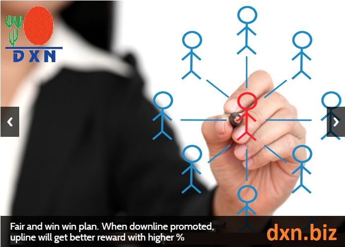 No breakaway-lines, upline gets promoted after successful downlines. http://dxn.biz/is-dxn-a-legitimate-company/