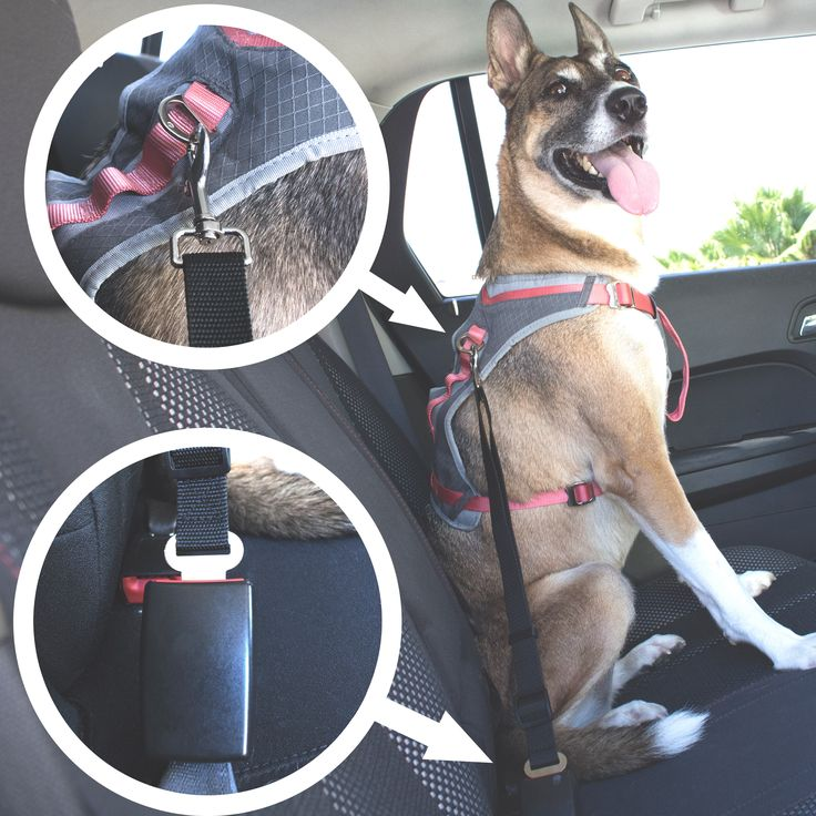 When traveling, we all make sure to buckle up and be safe, but what about our four-legged friends? Keep your dogs, and yourself, safe with this woven safety belt. The belt features a buckle that clicks into all standard seat …