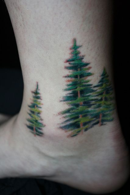 Pin by amber eunice on nature body art pinterest for Evergreen tree tattoo