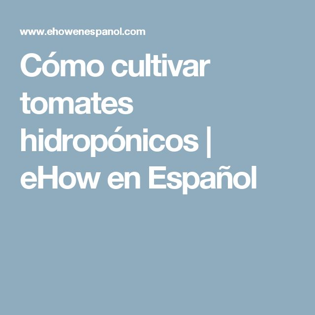 Cómo cultivar tomates hidropónicos | eHow en Español