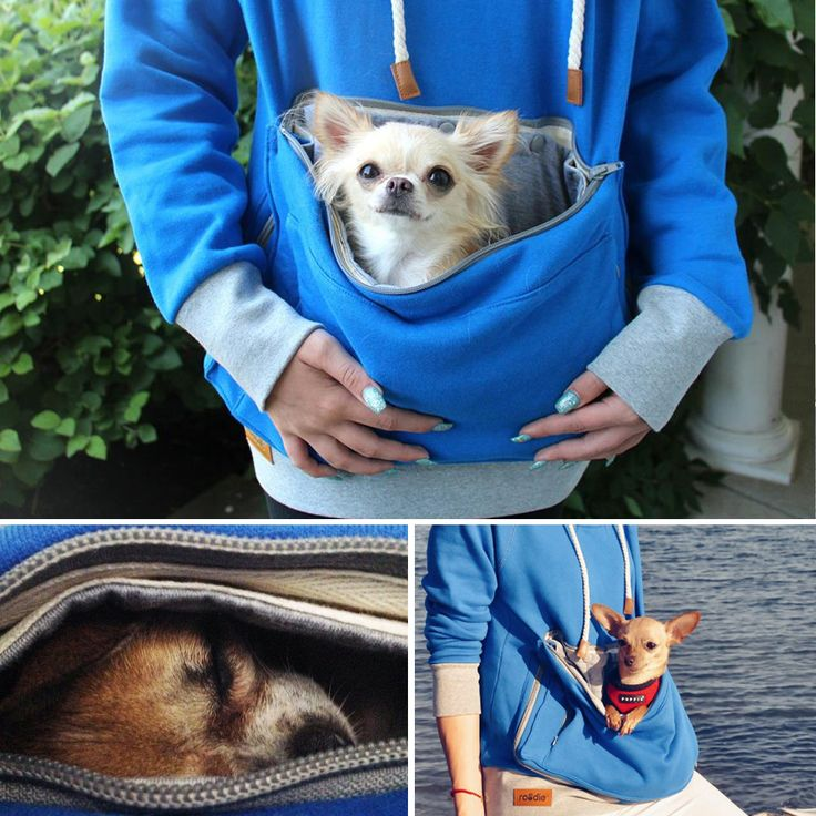 Roodie - Pet Carrier Hoodies - OMG! How CUTE! I'll take my chihuahua everywhere! https://www.roodiewear.com/products/roodie-pet-hoodie/?utm_source=pinterest&utm_medium=promotedpin&utm_content=ad002&utm_campaign=0000-ad002Pin&ref=0000-ad002Pin