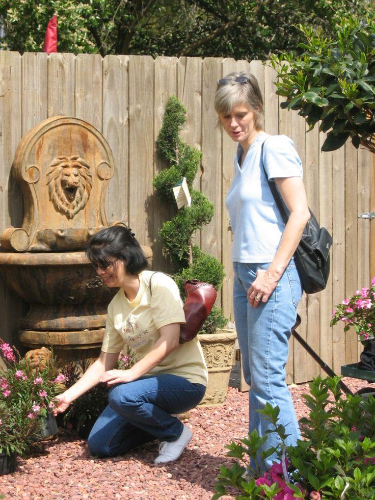 Exploring new spring garden art