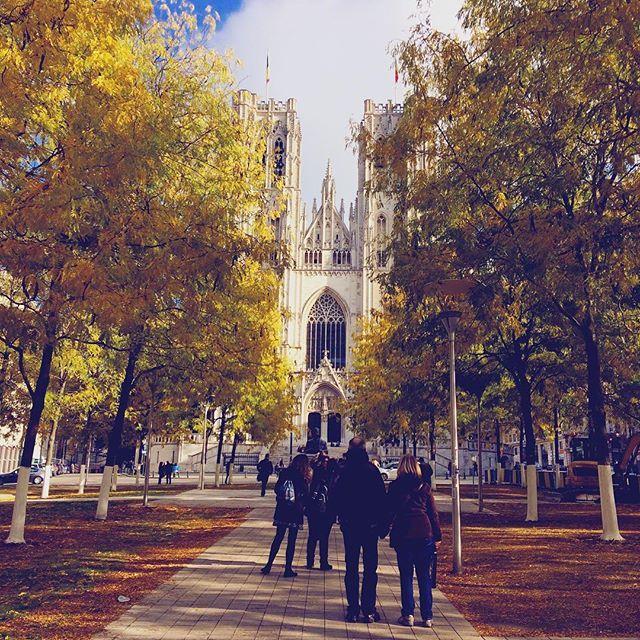Aujourd'hui c'était balade à Bruxelles et expo Harry Potter avec les copines. Un beau temps, de jolie photo, une belle expérience et de beaux endroit découverts #lovemycountry #bruxelles#belgium#fall#fallvibes#bxl#bestoftheday#colours#autumn#endoftheday#picofday#love#walk#harrypottertheexibition#harrypotter#potterhead#leaves#about#today#church#brusseld