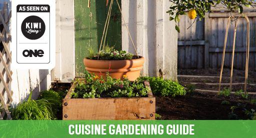 Tui Garden | Cuisine Gardening Guide
