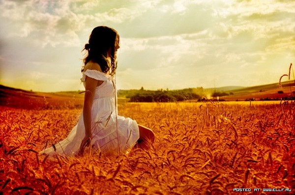 Wheat field portraits can't be beat.