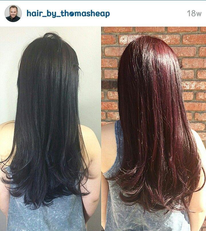 best 25 black cherry hair ideas on pinterest black