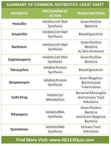 Summary of Common Antibiotics Cheat Sheet More