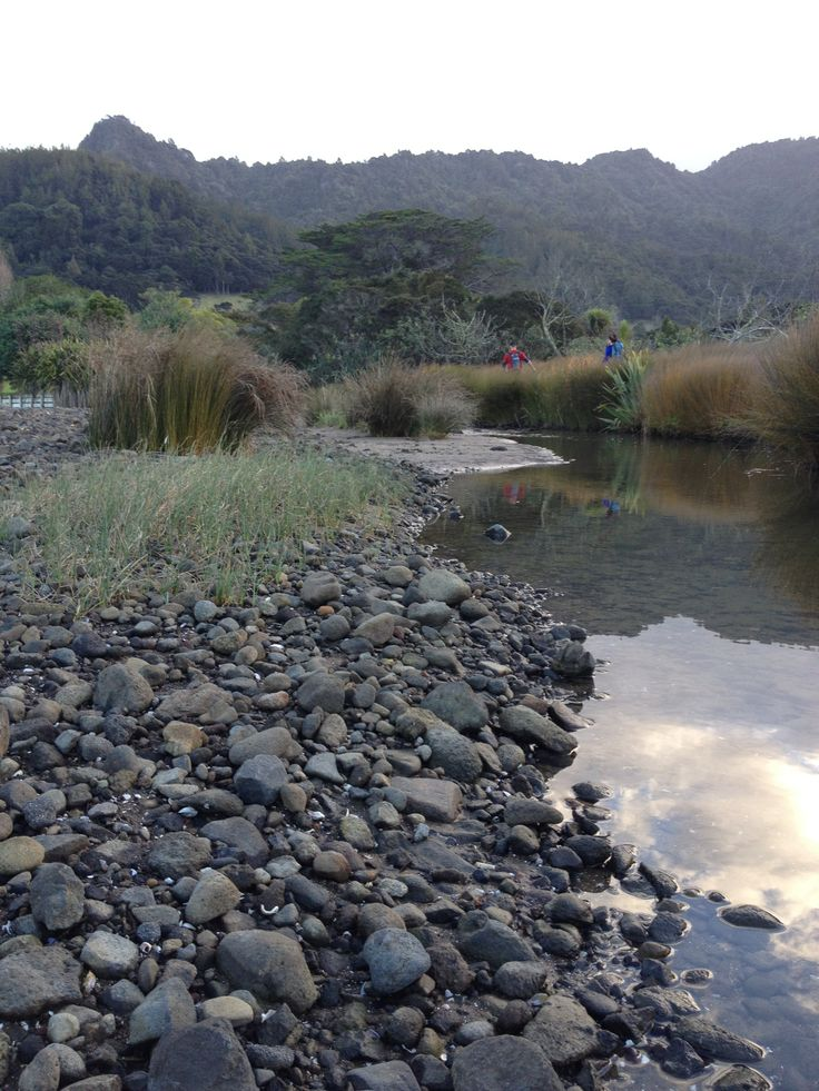 Waitakere Regional Park - Huia
