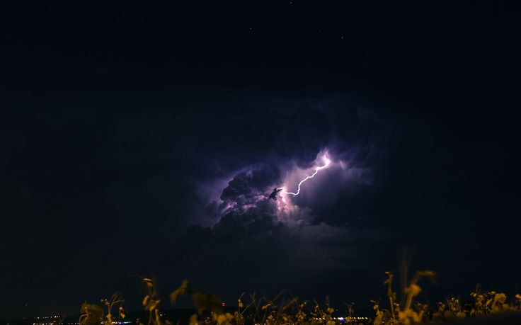 Thunder strike by lilium_eleven