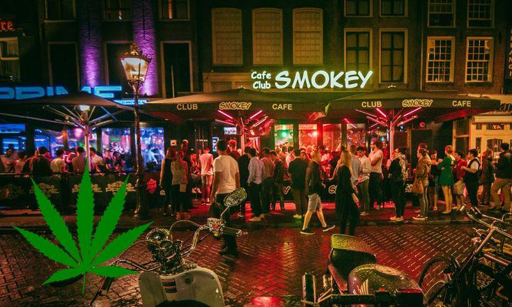 Фото марихуана амстердам скрещивание сортов марихуаны