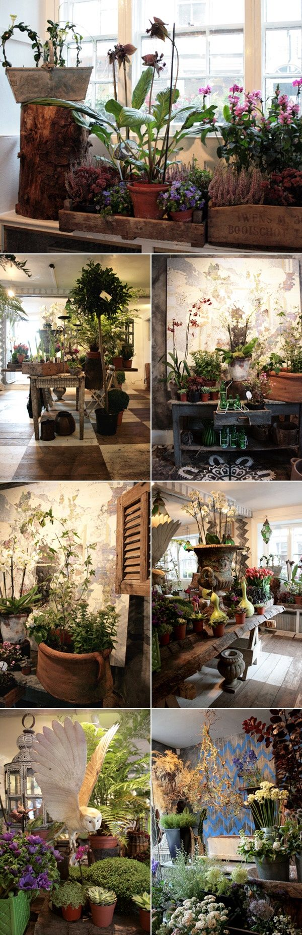 Twig florist shop in Tetbury, UK