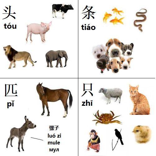 Mandarin Chinese From Scratch | Китайский язык с нуля: Grammar - Грамматика