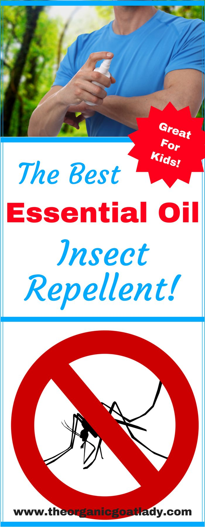 The Best Essential Oil Insect Repellent!