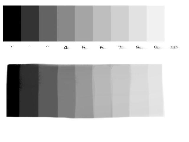 Qué es una escala de grises, para qué sirve y cómo usarla: Escala de grises o valor de 10 pasos.