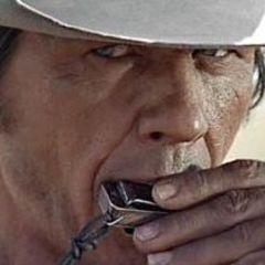 Charles Bronson in one of my favorite western movies!