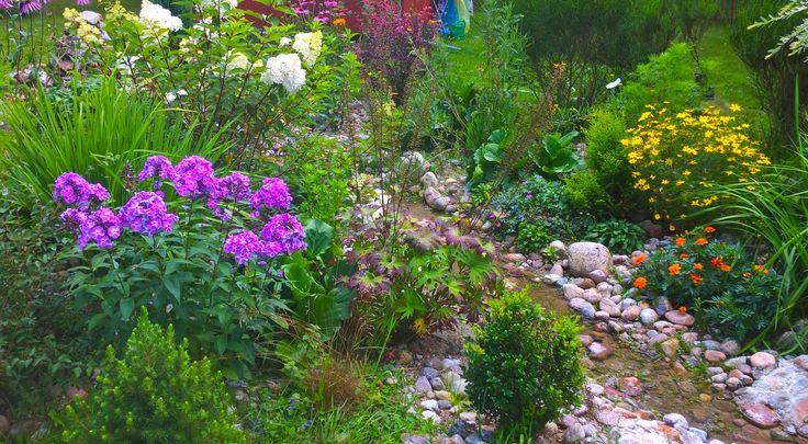 ogród Salinko