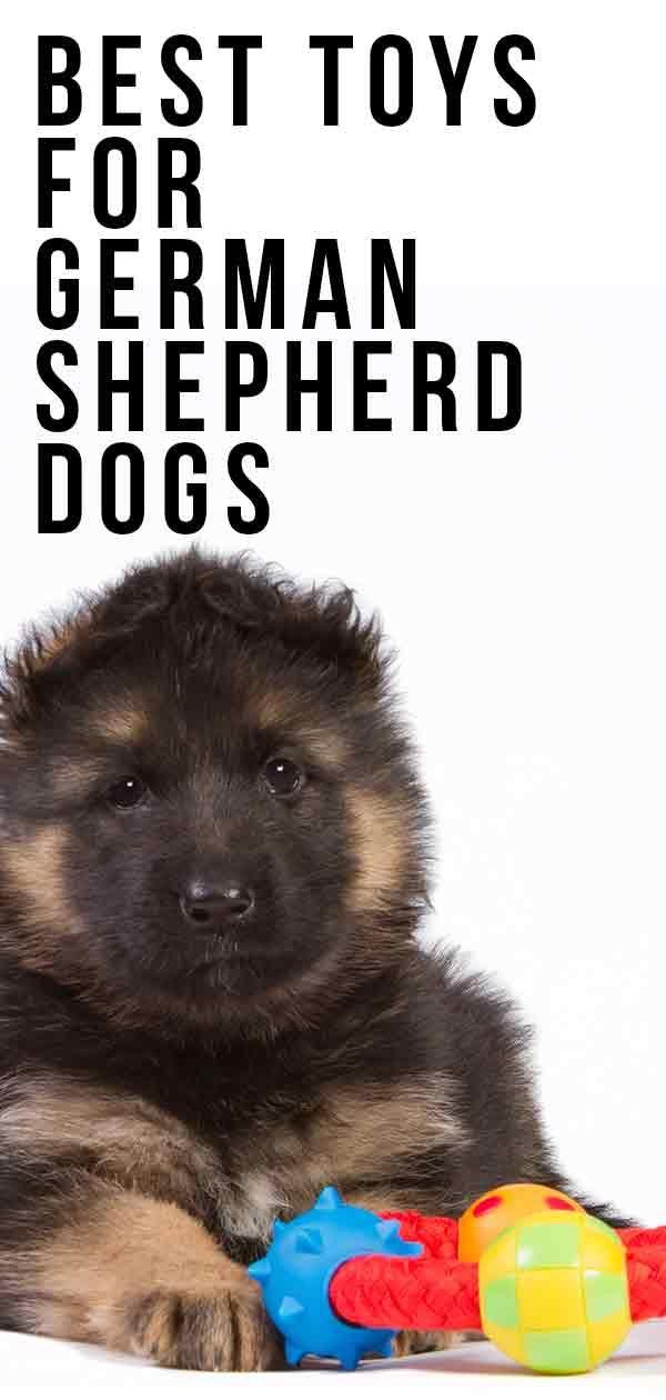 Best Dog Toys For German Shepherds Best Dog Toys Puppy Chew