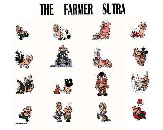 12 originales kamasutras para fotográfos, tipógrafos, diseñadores, amantes de los gatos, granjeros, linuxeros, geeks, padres, lectores, etc. http://finaldechiste.com/2671/12-originales-kamasutras/ kamasutra-granjero