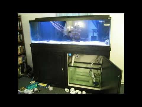 125 Gallon Aquarium - Built from beginning to completion - YouTube