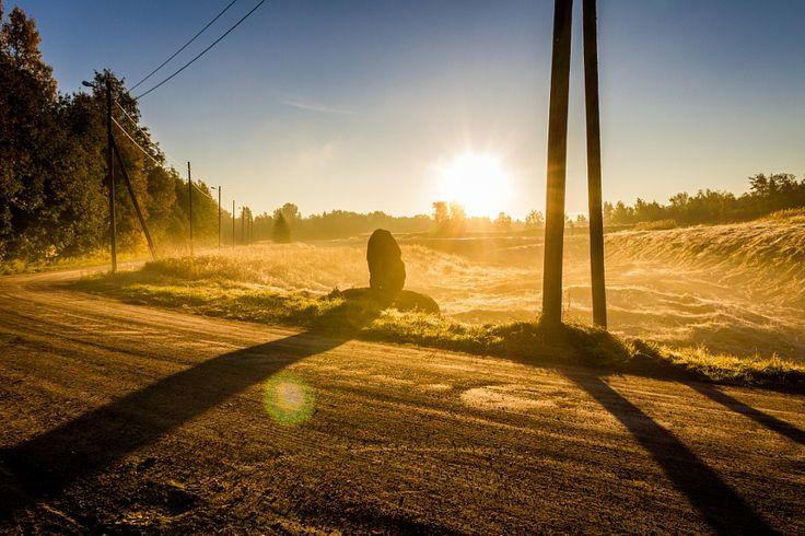 Antti Ukkonen photos on 500px. The world's premier photography community. - 500px