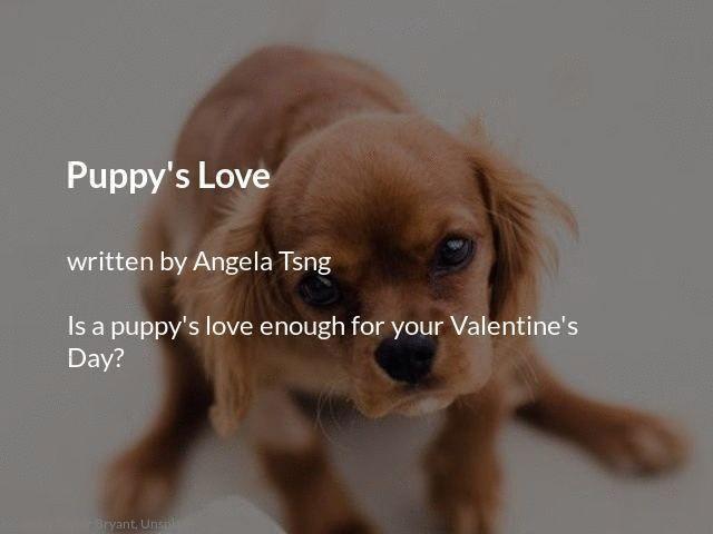 Puppy S Love Puppies Puppy Love Animals