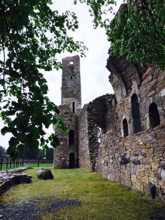 13th-century ruin of the Augustinian Abbey in Ferns, County Wexford.