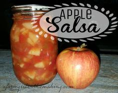 A delightful snack item, and nothing is better than Apple Salsa for a quick treat!  afarmgirlinthemaking.com