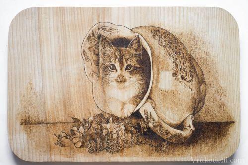 кошка на дощечке