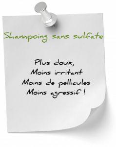 Shampoing sans sulfate : Nos recettes maison