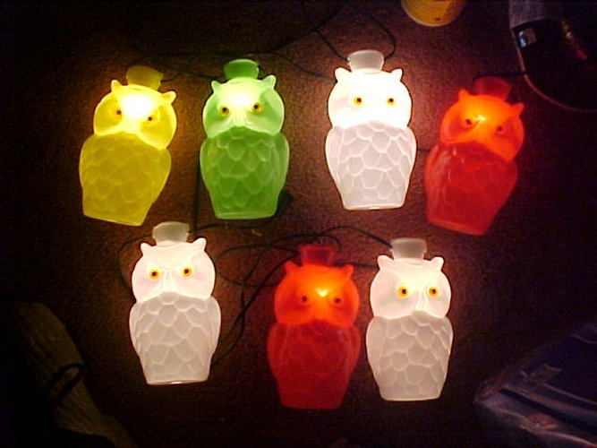 Owl Patio Lights Hung From The Awning Of Our Holiday Rambler On Camping  Trips