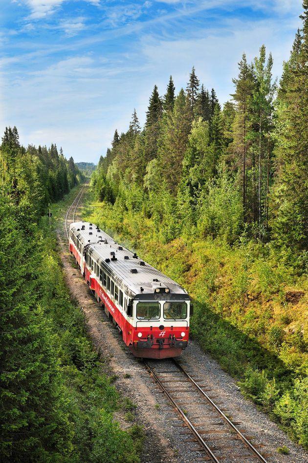 In Europa kun je op zoveel schitterende treinreizen maken door de ongerepte natuur. Wij hebben de vijf allermooiste voor je op een rijtje gezet.
