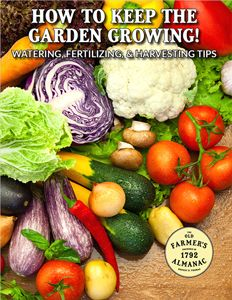 Save the seeds from your garden vegetables to replant next year! Here's a vegetable seed saving guide from The Old Farmer's Almanac.