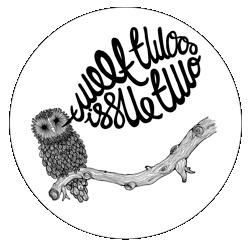 hootTalk Owls, Hoot Hoot