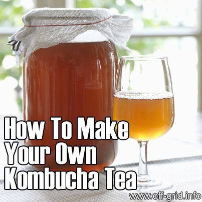 Please Share This Page: If you are a first-time visitor, please be sure to like us on Facebook and receive our exciting and innovative tutorials and info! Photo – © FOOD-micro – Fotolia.com Kombucha is a curious brew, yet has rocketed to huge popularity in recent times owing to its potential health benefits. Kombucha is [...]