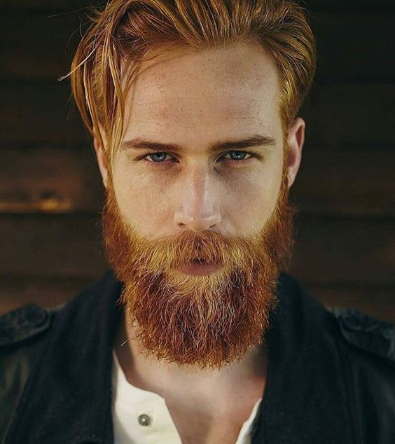 hair style pic for men best 25 beard ideas on why hair in 6744 | fc9a6744a30c634b25abca353d7ac769