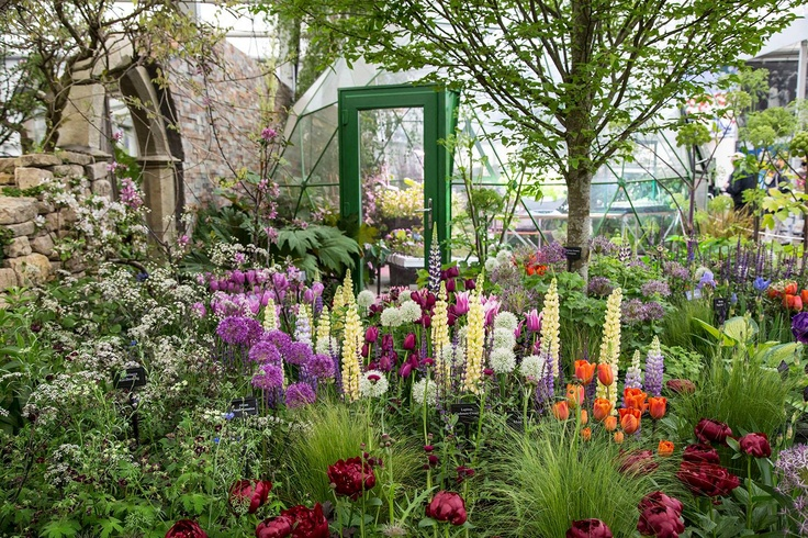 Our Solardome glasshouse amougnst the flowers at the 2013 Chelsea Flower Show