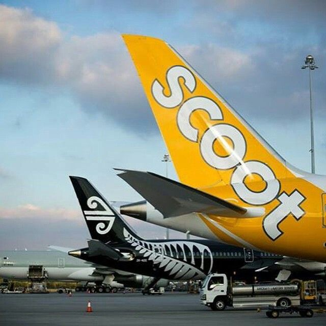 Scoot & Air New Zealand B787 Dreamliner Tails, Perth Airport @dennisbasham1